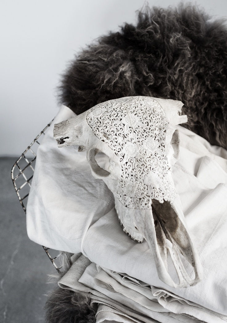 Lace Longhorns White | Love Warriors of Sweden