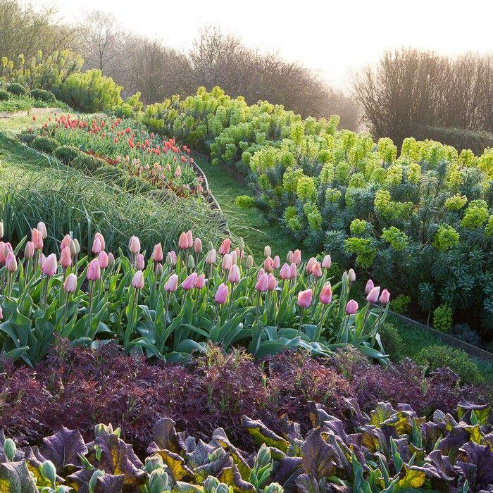 A enviable kitchen garden
