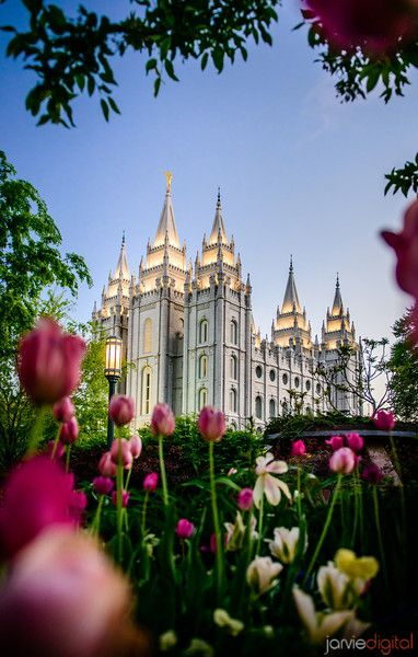 Image #88 - Jarvie Digital - Salt Lake temple in the springtime with the tulips