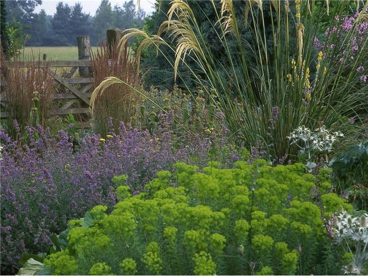 126 Best Images About Planting Design Beth Chatto On