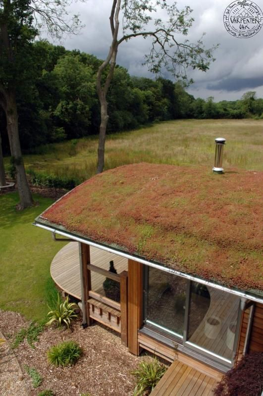 Curved timber roof with moss sedum. By Roderick James Architects