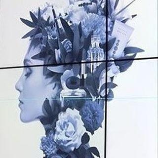 🌹 New ESSENS katalog🌹💄NEW ESSENS KATALOG 2018 💄 #parfemy #kosmetika #perfumes #nakuponline #magicpalette #krasa #prozeny #promuze #onlineparfumerie #onlineperfumery #unikatni #glitterparfumecase #glitterperfume #glitterperfumes#parfémy #drahokam #vůně #vune #parfemyniche #essensworldclub #mila_kralova_essens #essensparfemybrno