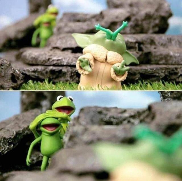 Babyyoda Loves Frogs Yoda Funny Star Wars Memes Funny Movies