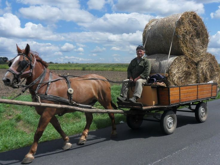 You can still see this in the Hungarian countryside: old way of farming in Hungary