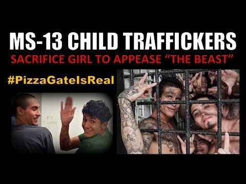 #PizzaGate - MS 13 Gang Sacrifices Child Victim to Satan - YouTube