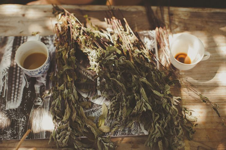 #summer #lato #food #herbs #zioła #kawa #słońce #friends #Zawoja #polish #mountains #góry
