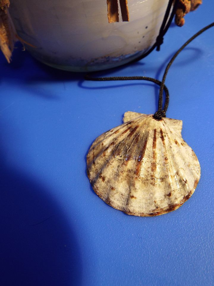 Real handmade scallop seashell with rich earthy tones.