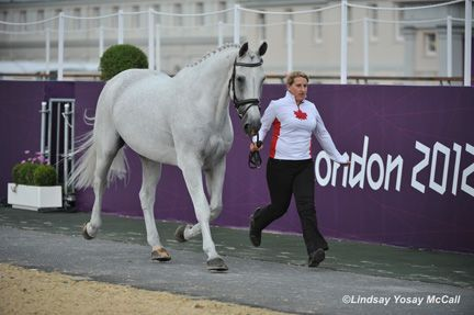 Canadian Paralympic Equestrian Team Prepared to Compete