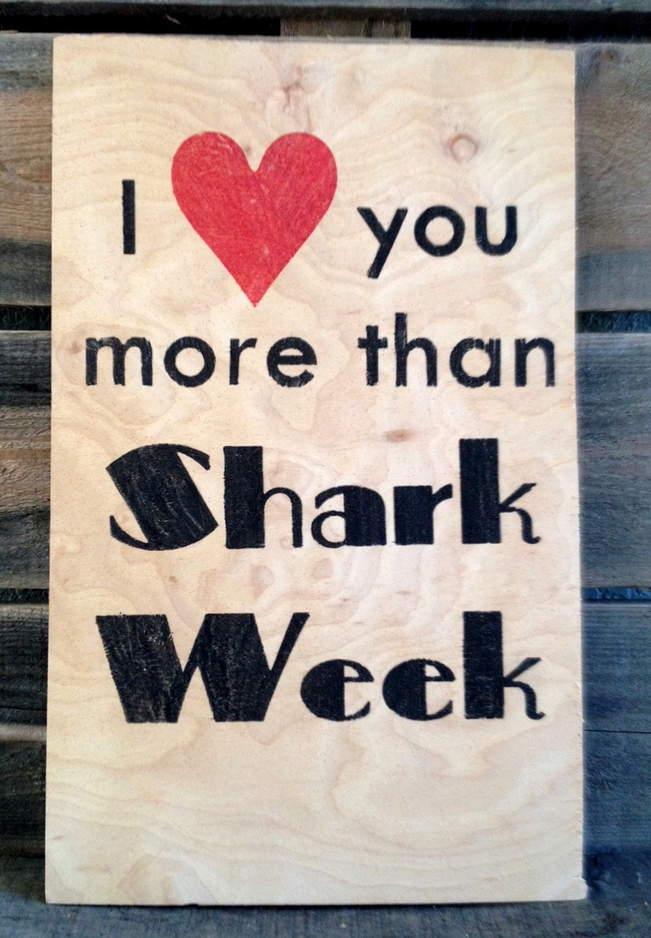 I Love You More Than Shark Week Wood Plaque