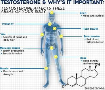 87 best SteROIDS, the Effects...AND Humor images on ...