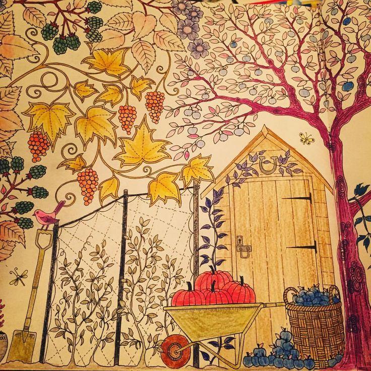 #art #artwork #ağaç #apple #book #boyama #color #coloring #çiçek #coloringbook #drawing #degrade #door #esrarengizbahçe #elma #flower #grape #hobby #johannabasford #kitap #kapı #leaf #painting #pumpkin #renkler #softcolors #secretgarden #therapy #yaprak #üzüm