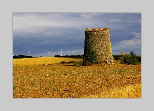 Lauragais, terre de vent et de blé
