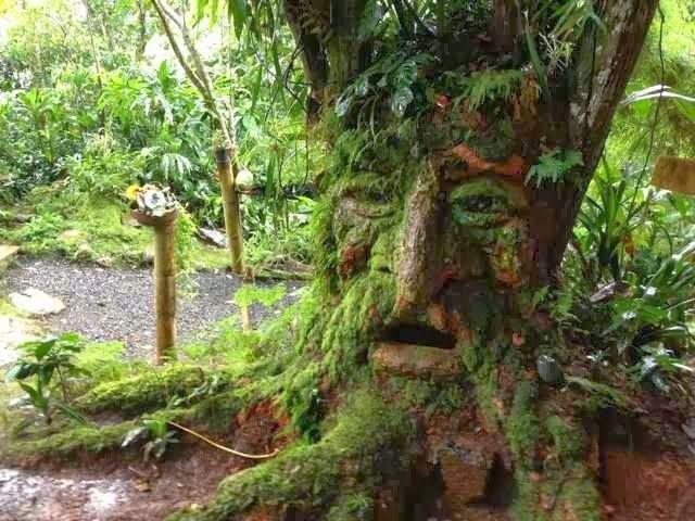 Hi: Bichacue Yath Arte & Naturaleza - A magical world ...
