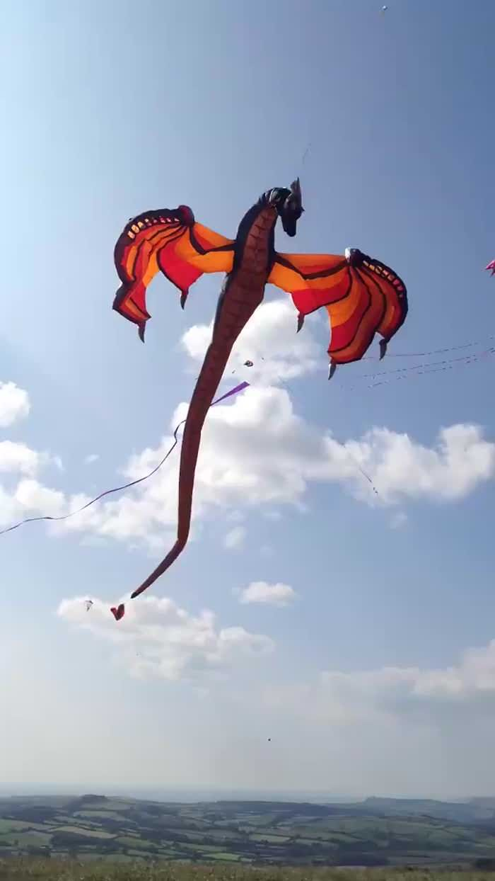 I just fell in love with this kite. Need one so badly - 9GAG
