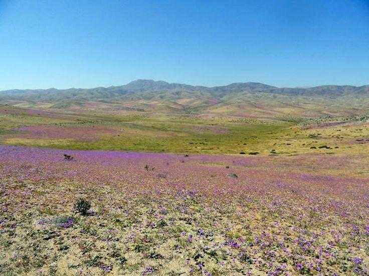 Hermosos Paisajes de Chile - Taringa!