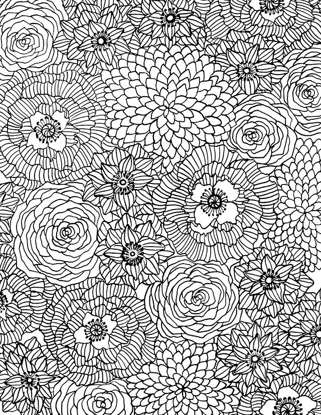 1000 Ideas About Flower Coloring Pages On