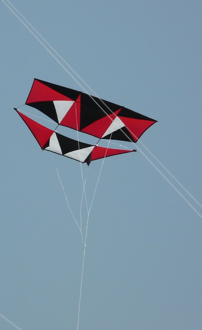 Love the simple but striking geometric graphic design on this wonderful large Dopero kite. Light wind flier extraordinaire! T.P. (my-best-kite.com) Cropped from a photo by Mike Carroll on Flkr.
