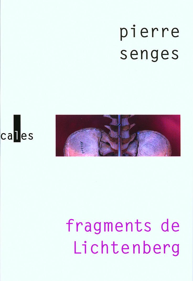 Pierre Senges   Fragments de Lichtenberg (2008)