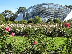 Adelaide Botanic Garden & Park, South Australia