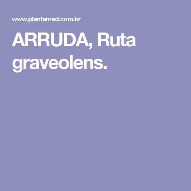 ARRUDA, Ruta graveolens.