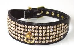 My blue heaven pet provide Leather dog collars for Hunting & Active Dogs. we are also provide dogleadandleashes in variety of different colors and designs. you can visit us:                               http://www.myblueheavenpets.com.au/dog_leads_leashes