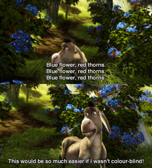 """Blue flower, red thorns, blue flower, red thorns, blue flower, red thorns... This would be so much easier if I wasn't colour-blind!"" Hilarious! # Donkey, Shrek I."