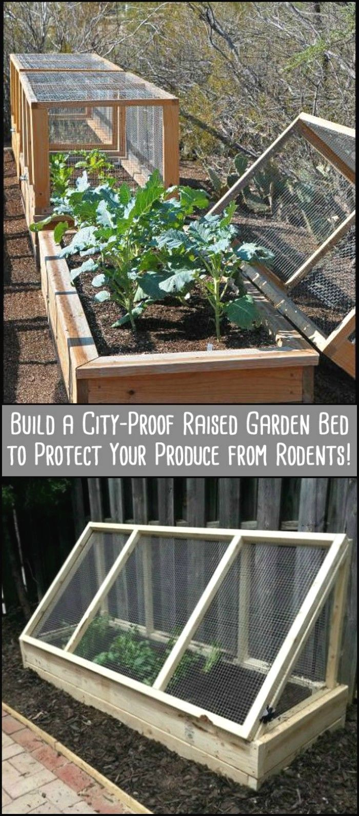 best diy images on pinterest cool ideas good ideas and