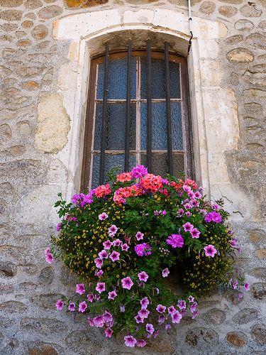 Purple & salmon flower combination. Petunias. Geraniums. Window box. Container planting.