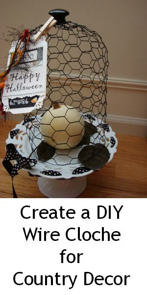 Make a Wire Cloche (protects houseplants from cats)