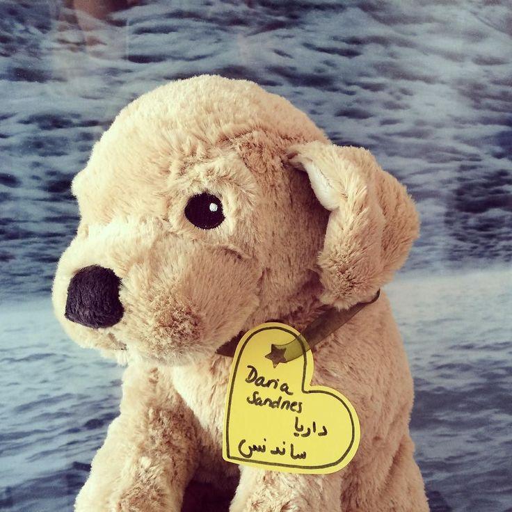 DARIA SANDNES another donated fluffy is going to Lebanon to comfort a Syrian refugee child.  more about this fluffy refugee project : www.lobilat.com #fluffyfriendsforsyrianrefugeekids #fluffylove #fluffydog #flauschigefreundefürsyrischeflüchtlingskinder #flauschig #plushiesofinstagram #refugeeproject #zumknuddeln #flüchtlingsprojekt #seelentröster