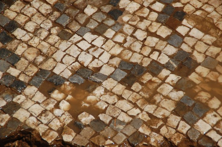 A detailed photograph of the tesserae, or tiles, that make up the massive Roman mosaic in Antiochia ad Cragum