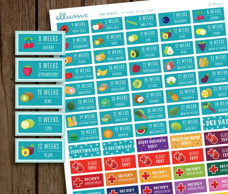 Printable Pregnancy PLANNER STICKERS | DIY Baby Banners | Baby is the size of | Week by Week Maternity Countdown | Fruit Pregnancy Trackers by ellums on Etsy