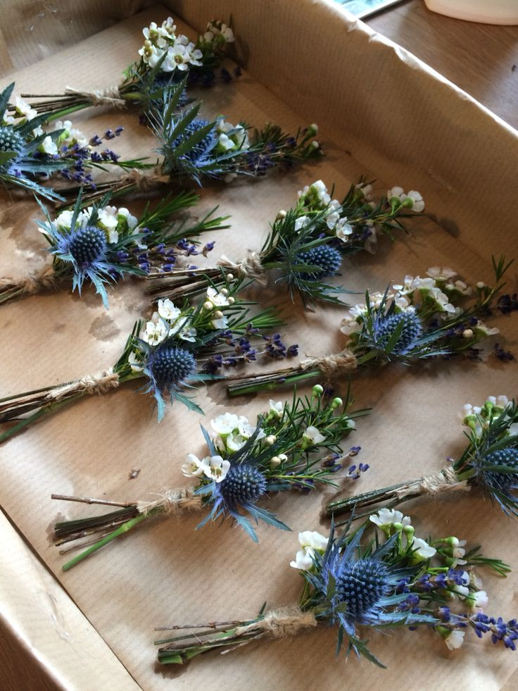 Rustic boho country garden wedding. Buttonholes with thistle, sea holly, Eryngium, and Lavender and Wax Flower. Tied with natural twine.