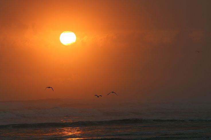 #sunrise #newzealand #mountmaunganui #sun