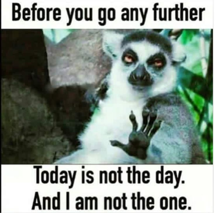 Ayyyye.....sometimes it be like that