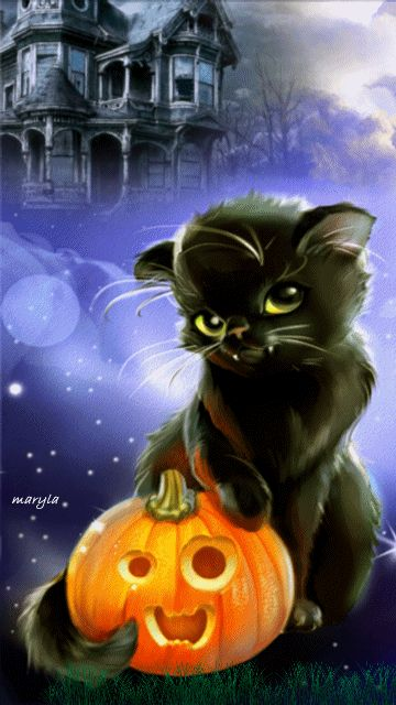 Black Cat animated gif halloween black cat haunted house halloween pics