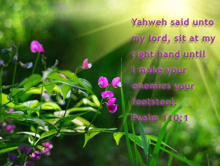 """Yahweh (יהוה) said unto my lord, sit at my right hand until I make your enemies your footstool"" (Psalm 110:1, compare the English and Hebrew at this link -- http://biblehub.com/text/psalms/110-1.htm). We know from the Hebrew scriptures that this psalm originally had the name of Yahweh (יהוה) where we now read in English, ""The LORD."" But, how did Christ quote this scripture? According to Matthew, Mark and Luke, the Lord Yeshua quoted this scripture. Did he say, ""Lord,"" or did he say the…"