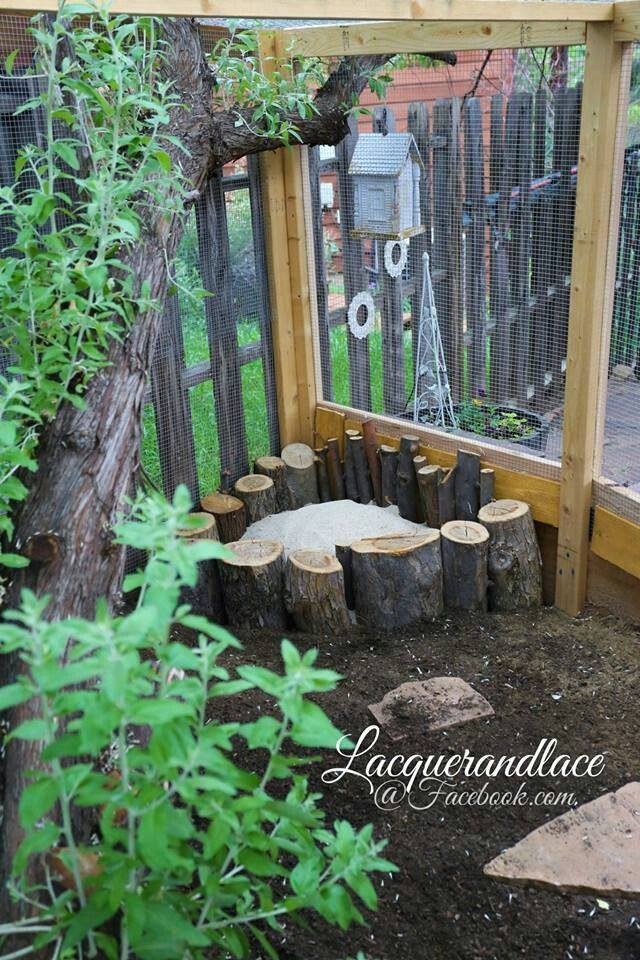 Dust bath for chickens  - I like the stumps or logs surrounding this one