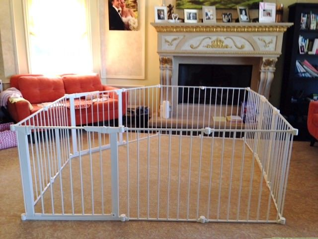 stand alone pet gate