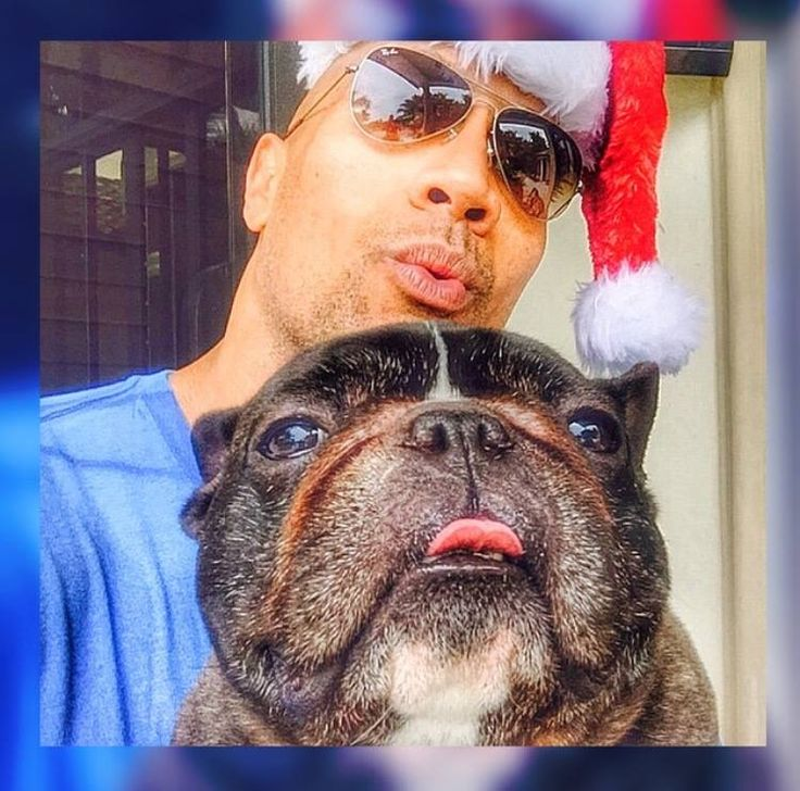 """Please hurry up and take this selfie - you have new Christmas gifts I need to go pee on.."" ~ Louie The Beast"