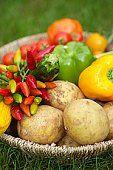 Gestoomde gemengde groenten