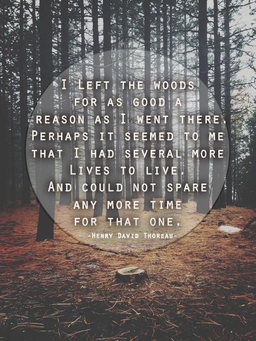 I left the woods for as good a reason as i went there. Perhaps it seemed to me that I had several more lives to live and could not spend any more time for that one. -Henry David Thoreau