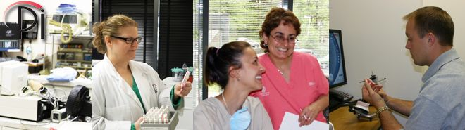 Research at Pi Dental Center explores implant placement, success rates,All-On-4, Teeth In A Day, No Bone Solution and special needs patients.