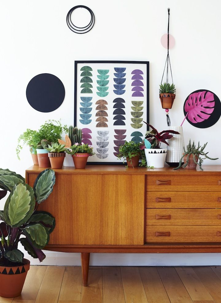Colorful living space. Decorating with plants.