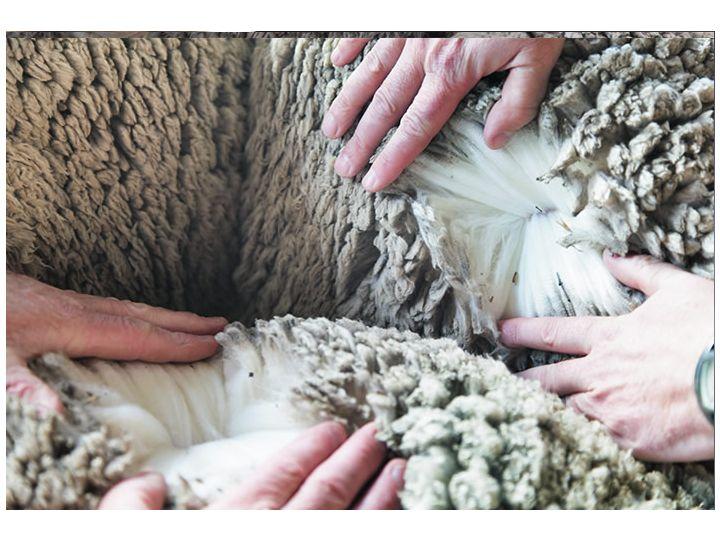 Nykommeren i Bogstadveien, With&Wessel, er en ull-spesialist fra New York med god norsk strikketradisjon som fundament. Like før jul åpnet New York-Baserte W&W i Bogstadveien1, i Sykkeldelisk´ gamle lokaler. Etter å ha slått seg opp i New York, med høy kjendisfaktor og klassisk design, ligger veien klar for suksess i Bogstadveien. Basale Eiendom, som er …
