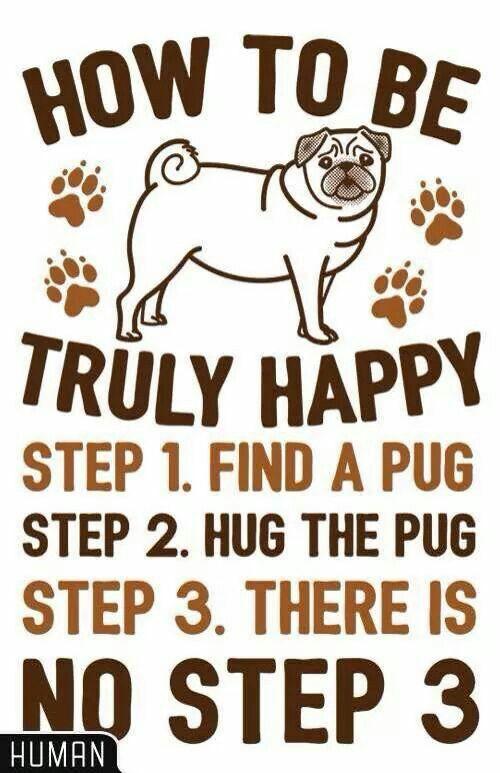True! HAHAHAHA just looking at him would make you happy. Must name him Frank