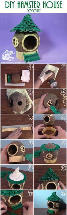 DIY hamster house (coconut) Como fazer uma casinha para hamster com coco. by AnimalPetFans #diy #hamsterhouse #diyhamster