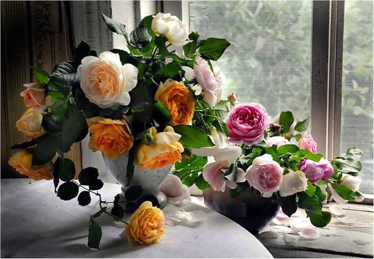 Пазл Цветы на подоконнике — собрать пазл онлайн