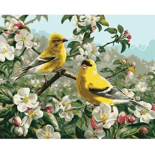 Paint By Number 'Goldfinches' Kit - Free Shipping On Orders Over $45 - Overstock.com - 13484192 - Mobile
