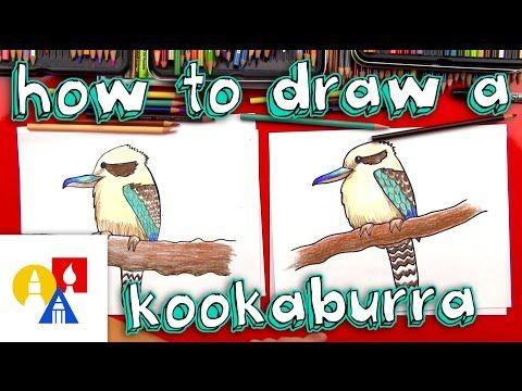 How to draw a kookaburra step by step.
